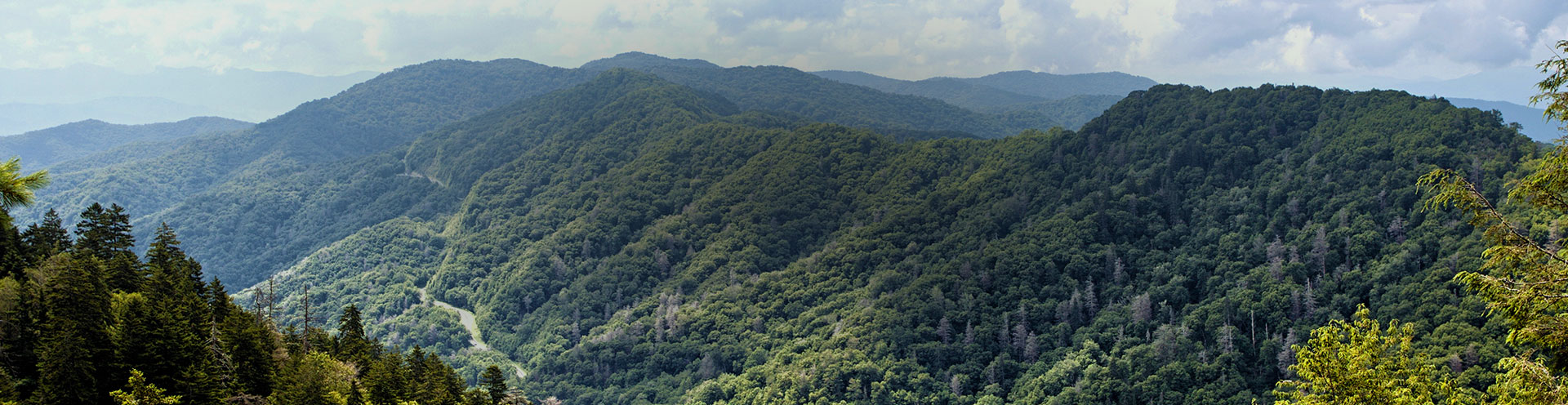 View of the Smoky Mountains in the springtime